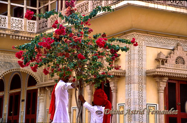 India-Amber-Fort-conversers-Rajasthan