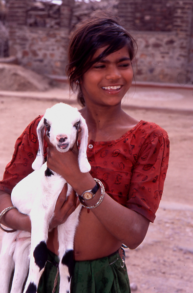 India-young-girl-with-goat-Rajasthan